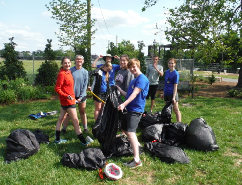 Youth Council Cleans Up!