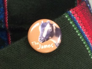 The James pin